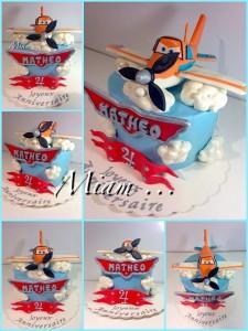 miam design cake planes