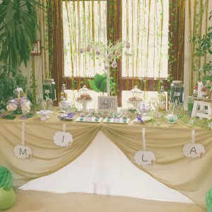 Premier anniversaire et baptême Fée Clochette sweet table enchantée